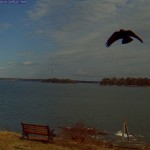 Freeport, Maine webcam archive pic.