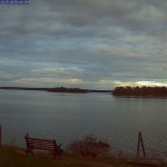 Freeport Maine Webcam large sea bird Gallery picture